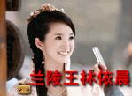 Lanlingwanglinyichenhuazhuang